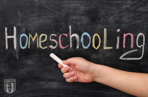 parents-guide-to-homeschooling-1-1